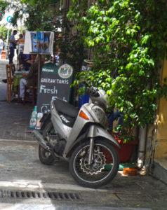 Moded mieten auf Curacao